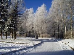 Результаты Зимнего Чемпионата и Первенства Смоленской области 2012